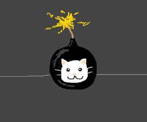 Cat-Bomb
