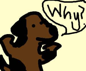 "Dog asks, ""why?"""