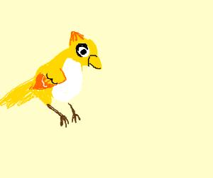 Bastion's Bird