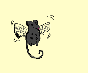 Fly and Mouse combination