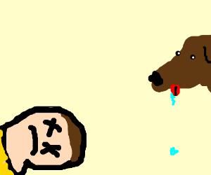 dog watching a dead man