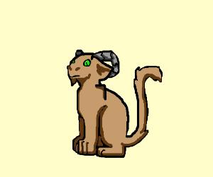 cat-goat mix