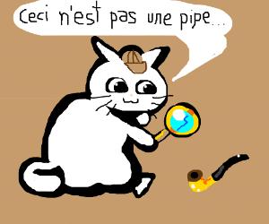 a detective cat investigates pipes