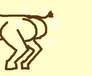 reindeer buttocks