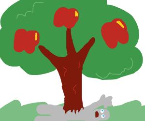 an apple tree grows threw someone