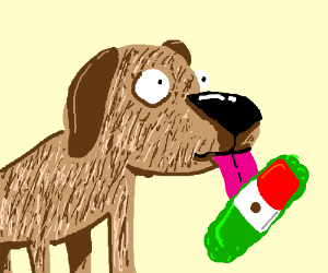 dog with sunglasses licks mexican pickle