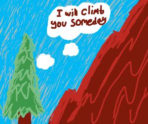 christmas tree wants to climb a mountain