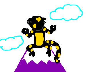 Buddhist Salamander