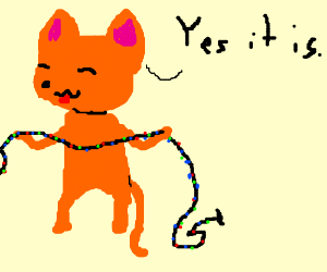 """Yes it is,"" says cat holding colored lights."