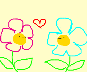 Two flowers in love
