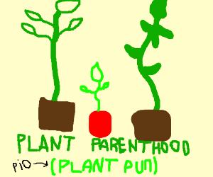 Plant Pun