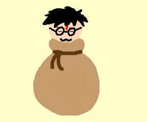 Harry Potter the Bag Wizard