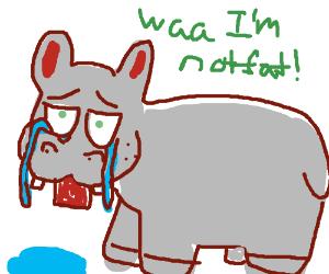 Hippo cries when someone calls it fat