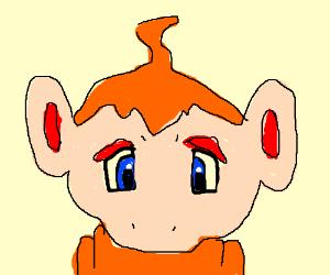 chimchar (from pokeman)