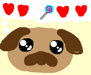 Dog thinking about love and candy