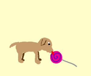 Puppy loves lollipops