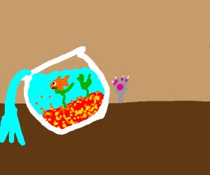 Goldfish upset about wonky bowl