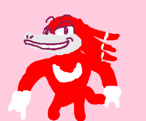 Knuckles The Echidna!