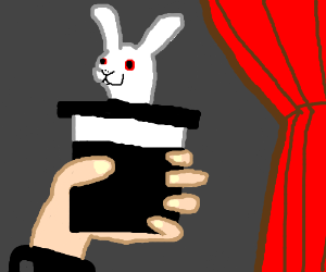 A magician and a rabbit