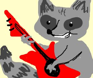 Rockin' Raccoon