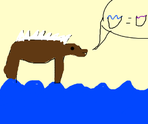 bear can walk on water