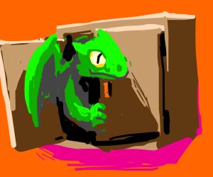 The dragon in my cupboard