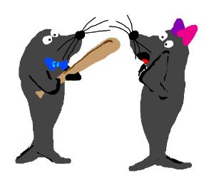Awkward Sea Lion date