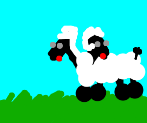The appalling two headed sheep!