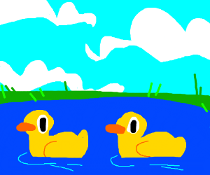 Two rubber ducks swim in a pond