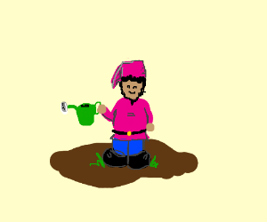 a pink gnome