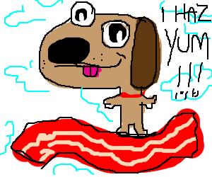 Disproportionate dog has YUM
