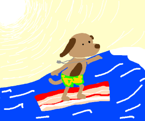 Dog surfing on bacon
