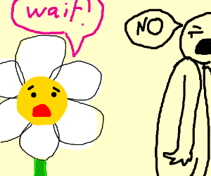 flower begs to wait, man nonchalantly refuses