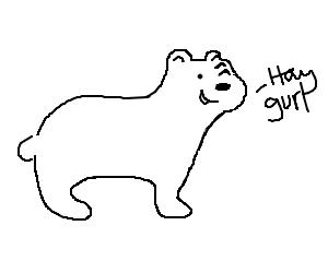 "bear says ""hay gurl"""