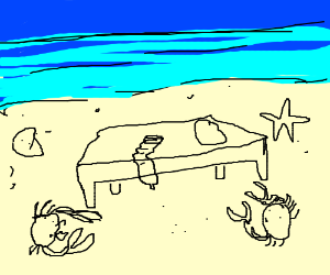 guys says wussat to a bed on the beach?
