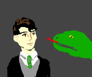 Harry poter lizard