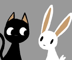 A cat and a bunny
