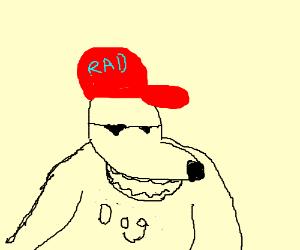 Rad dog