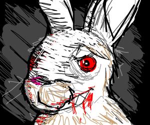 insane rabbit