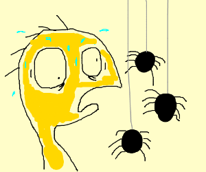 Cheese (FHFIF) afraid of spiders
