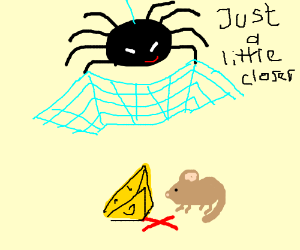 A spider trapping a mouse
