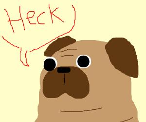 Pug says heck