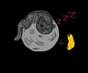 VERY big cat sleeps on moon, banana is present