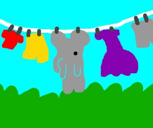 A skinned elephant hanging alongside clothes