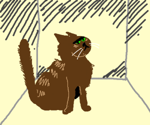 Schroedinger's cat ain't that happy