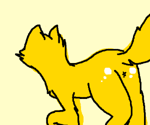 Yellow cat got dat shiny ass