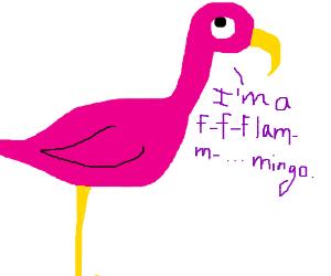 Stuttering Flamingo