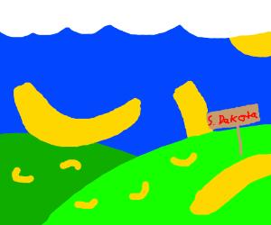 South Dakota, the land of bananas
