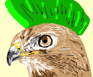 Mohawk Hawk