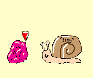 Pink rock loves sexy snail